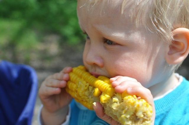 Enfant mangeant du blé d'inde
